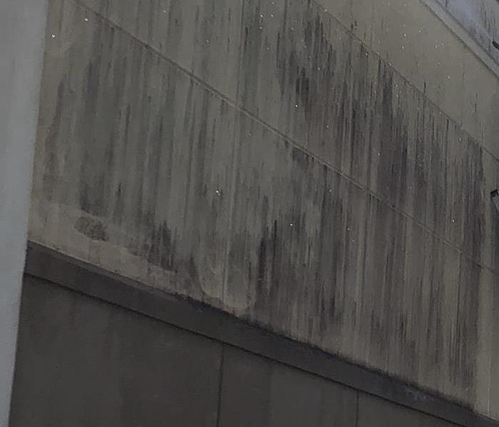exterior wall of a building covered in mildew