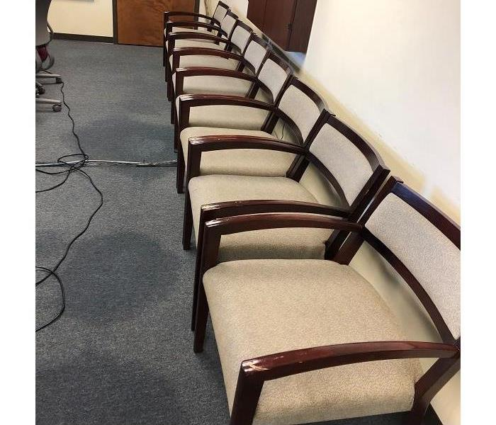 Row of office chairs after they were professionally cleaned by SERVPRO