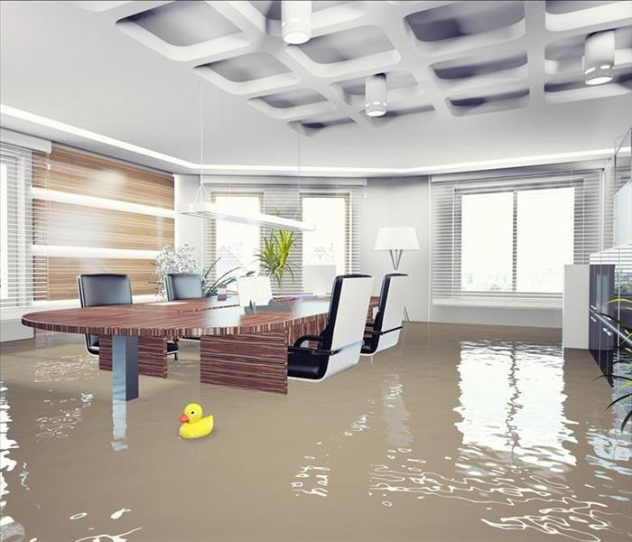 Water Damage Water Water Everywhere!
