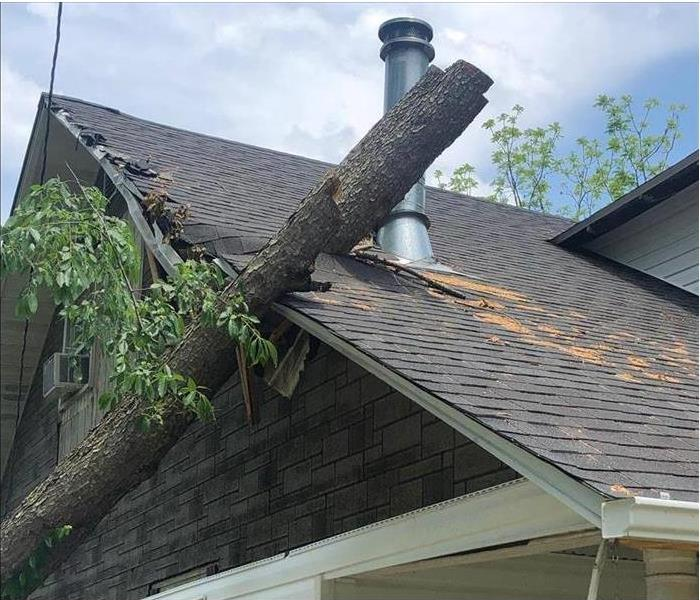 Roof with tree that has fallen onto it